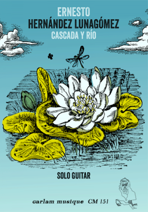 Cascada y rio solo guitar cover