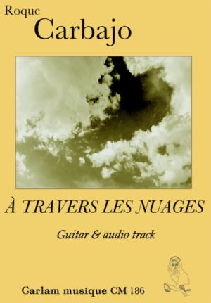 À travers les nuages karaoke guitar cover